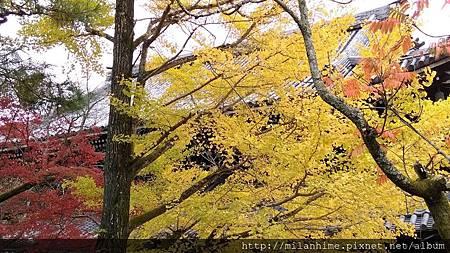 2015京都-1117- 南禪寺-62.jpg