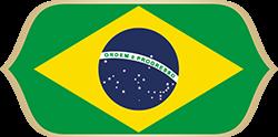 2018-E-Brazil.png