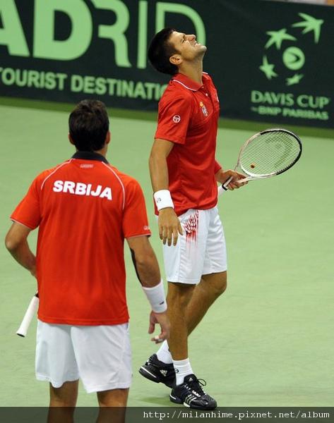 2010DavisCup-0918-Serbia-lose-nole-Zimonjic.jpg