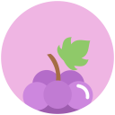 grapes-icon08.png