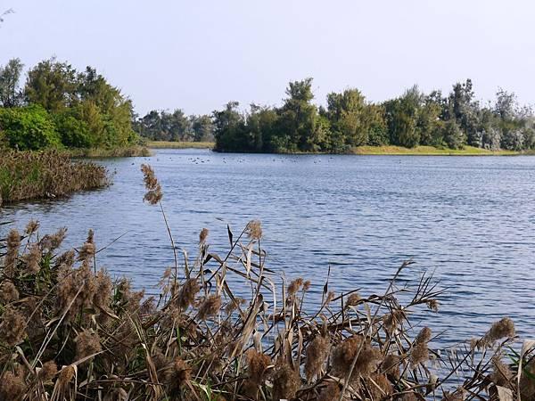 南池遊憩區 (31)