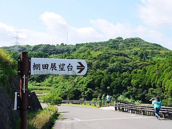 兵野浦棚田 (11)