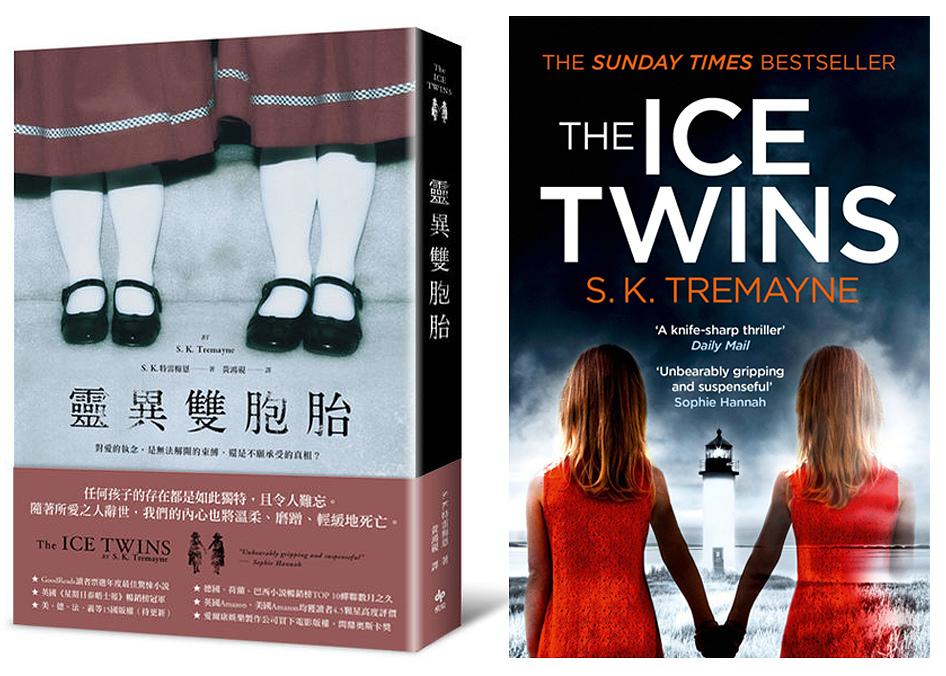The Ice Twins.jpg