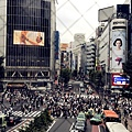 day4台場及涉谷 (1).JPG