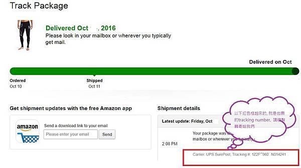 Amazon 6.jpg