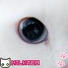 98x98_milktea_05.jpg