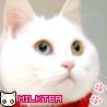 98x98_milktea_02.jpg
