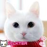98x98_milktea_06.jpg