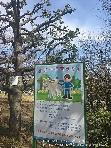 都電荒川線21.jpg