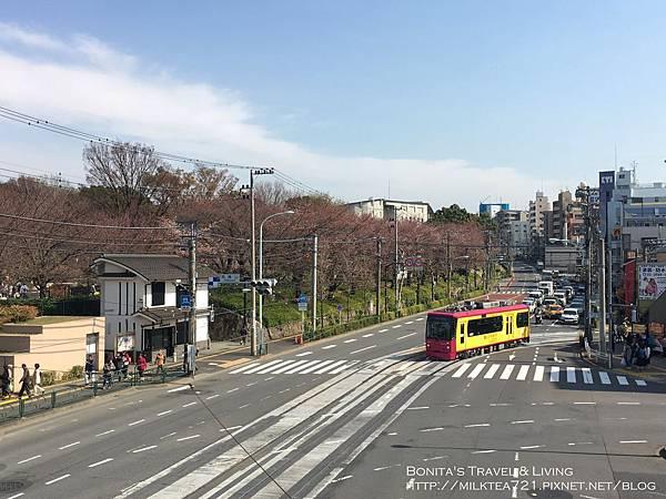 都電荒川線39.jpg