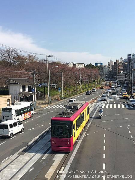 都電荒川線40.jpg