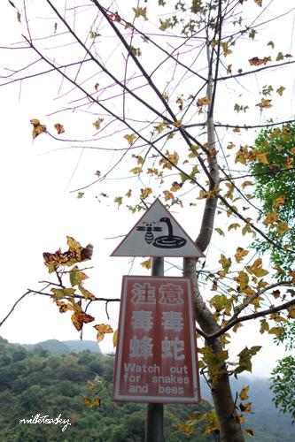 2013 花蓮 慕谷慕魚 (6)