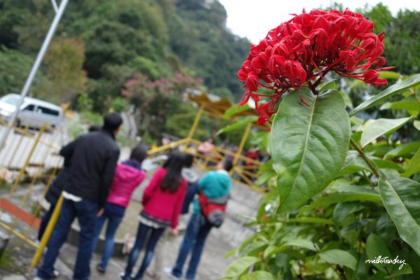 2013 花蓮 慕谷慕魚 (9)
