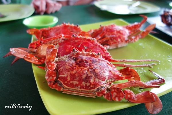 2014 菲律賓科隆島 Coron 吃食 推薦 (1)