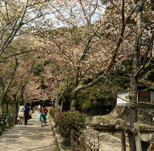 Kyoto2-01