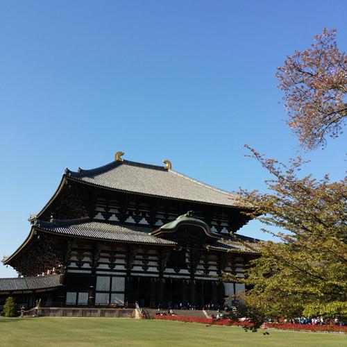 Nara (1)
