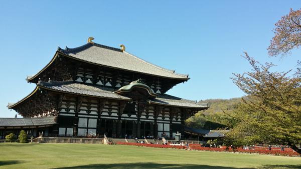 Nara (8)