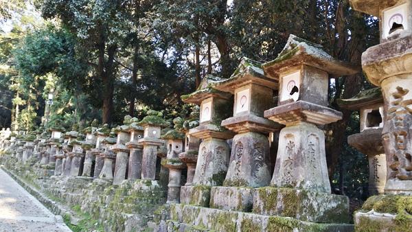 Nara (16)