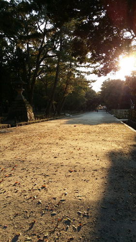 Nara (22)