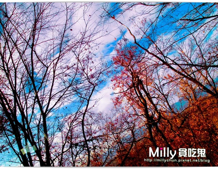 南漢山城00049.jpg