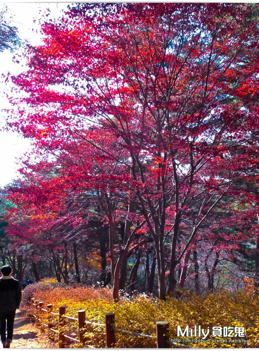 南漢山城00077.jpg