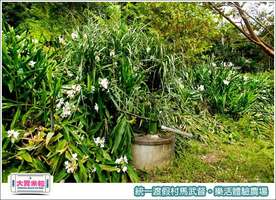 統一渡假村馬武督-樂活體驗農場@大胃米粒0015.jpg