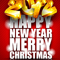 2011-12-28_134907.png