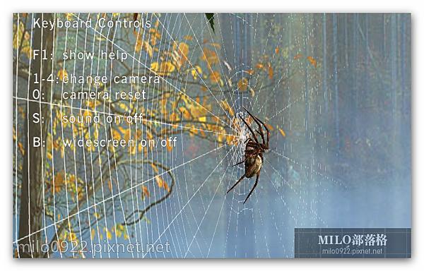 3DSpider 蜘蛛結網 可調視角 milo0922.pixnet.net__002_