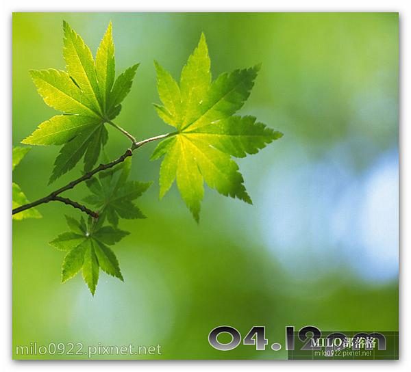 green_foliage_milo0922.pixnet.net__009_