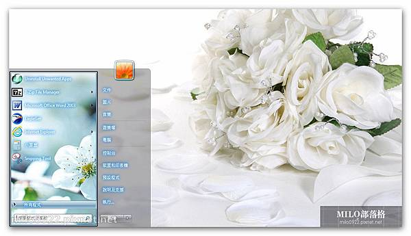 白色花朵  milo0922.pixnet.net__014__014