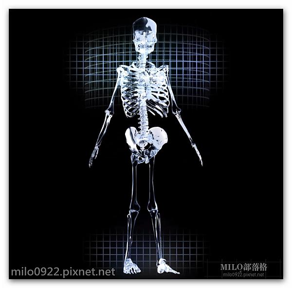 Skeletal   milo0922.pixnet.net__019_