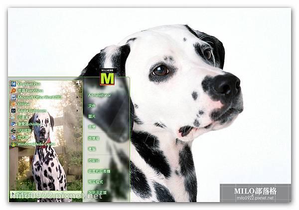 斑點犬Dalmatian可愛win7  milo0922.pixnet.net__036_00596