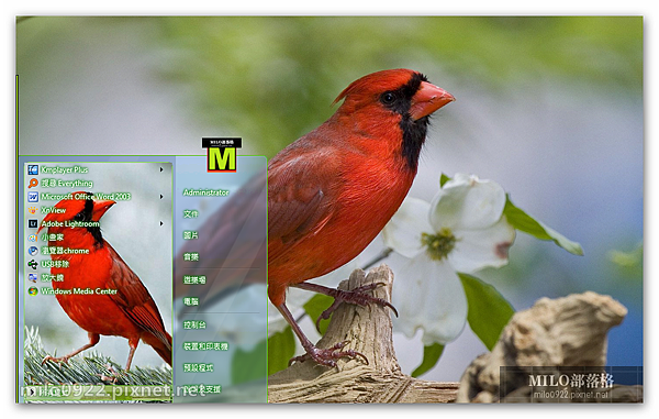 紅衣主教鳥可愛win7   milo0922.pixnet.net__026_00586