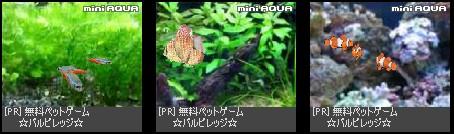 2009-08-07_231103.jpg