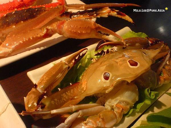 紅蟹將軍-不知名螃蟹
