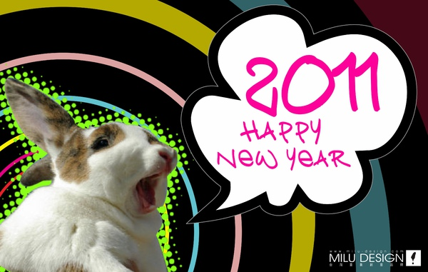 2011HAPPY NEW YEAR