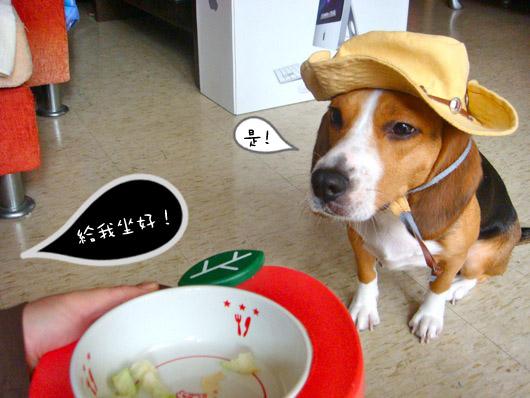 米滷很忙-01.jpg