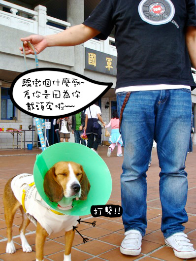 04.04-清明-06.jpg