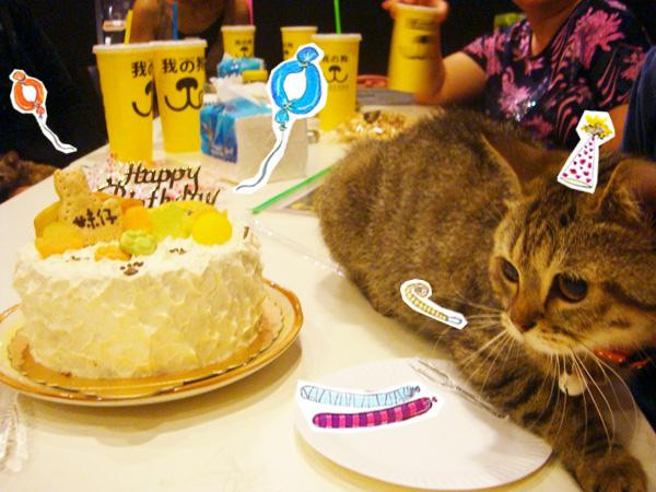 cake&mei.jpg