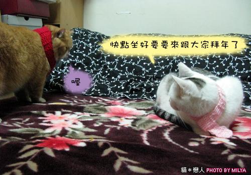 20081215-恭喜發財新年快樂01