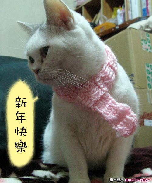 20081215-恭喜發財新年快樂03