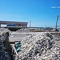 將軍漁港2.JPG