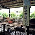 乳牛的家7.JPG