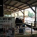 乳牛的家8.JPG