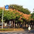 東豐路14.JPG
