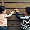 鹿谷內湖國小16.JPG