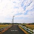 龍磐草原29.JPG