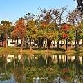 巴克禮公園2.JPG