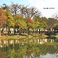 巴克禮公園4.JPG