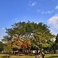 巴克禮公園8.JPG